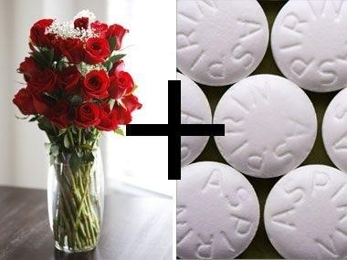 roseandaspirin[1]