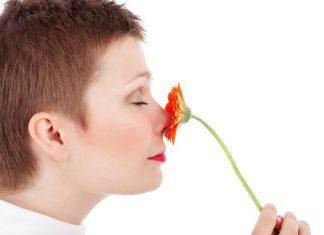 Adult Beauty Face Female Flower  - PublicDomainPictures / Pixabay