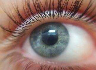 Eye Eyelashes Eyeball Blue Eyed  - lkbbb / Pixabay