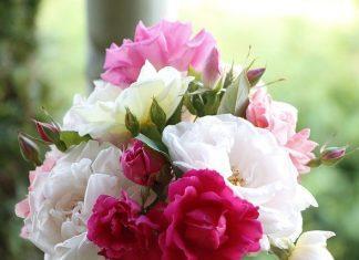 Rose Bouquet Flowers Nature  - AidylArtisan / Pixabay