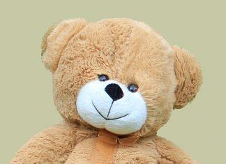 Teddy Bear Cute Soft Toy Fluffy  - bluebudgie / Pixabay
